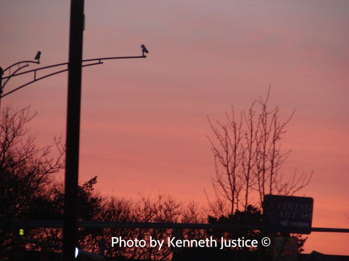 Isn't it funny how a sunrise still looks beautiful even with telephone poles and street signs in the way?